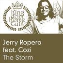 The Storm (Single) thumbnail