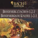 Bach: Brandenburg Concertos 1-2-3 thumbnail