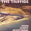 Born Sandy Devotional thumbnail