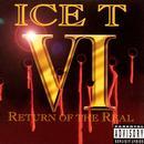 VI: Return Of The Real thumbnail