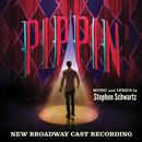 Pippin (New Broadway Cast Recording) thumbnail