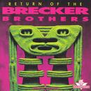Return Of The Brecker Brothers thumbnail