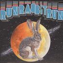 Run Rabbit Run thumbnail