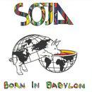 Born In Babylon thumbnail