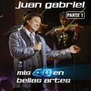 Mis 40 En Bellas Artes (En Vivo Desde Bellas Artes, Mex Ico/ 2013), Parte 1  thumbnail