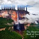 The Americas - Book Of Love Vol 1 thumbnail