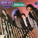 Drop Out With The Barracudas thumbnail