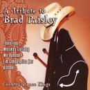 A Tribute To Brad Paisley thumbnail