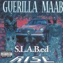 Rise: S.L.A.B.ed (Explicit) thumbnail