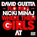 Where Them Girls At (Instrumental) (Single) thumbnail