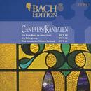 Bach Edition: Cantatas, BWV 80, 82, 61 thumbnail