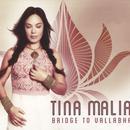 Bridge To Vallabha thumbnail