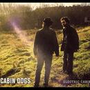 Electric Cabin thumbnail
