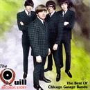 The Quill Records Story: The Best Of Chicago Garage Bands thumbnail