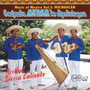 Music Of Mexico, Vol. 2: Arriba Tierra Caliente! thumbnail