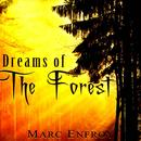 Dreams Of The Forest thumbnail