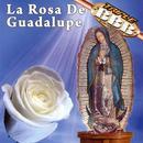 La Rosa De Guadalupe thumbnail