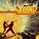 The W.A.N.D. thumbnail