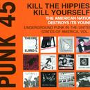 Punk 45: Underground Punk In The United States Of America 1973-1980, Vol. 1 thumbnail
