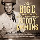 The Big E: A Salute To Steel Guitarist Buddy Emmons thumbnail