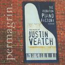 Permagrin: The Music Of Justin Veatch thumbnail