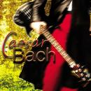 Caesar Bach thumbnail