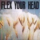 Flex Your Head thumbnail