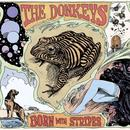 Born With Stripes thumbnail