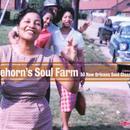 Sehorn's Soul Farm - 50 New Orleans Soul Classics thumbnail