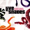 Live Snakes thumbnail