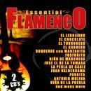 Essential Flamenco thumbnail
