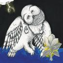 The Magnolia Electric Co. (Deluxe Reissue) thumbnail