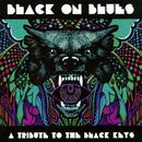 Black On Blues - A Tribute To The Black Keys thumbnail