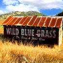 Wild Blue Grass thumbnail