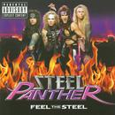 Feel The Steel (Explicit) thumbnail